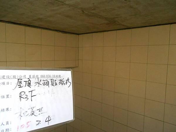 02-04 R3F水箱貼磁磚