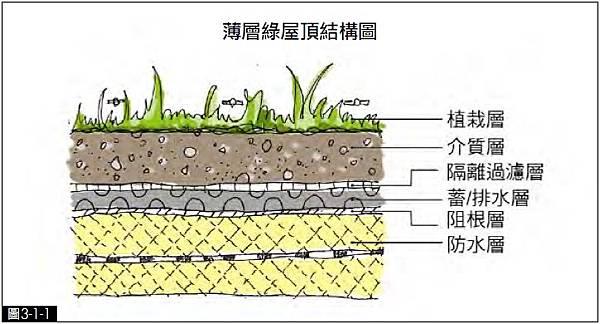 屋頂綠化,綠建築,薄層式,綠屋頂,結構圖,建築,內政部,植栽,示意圖