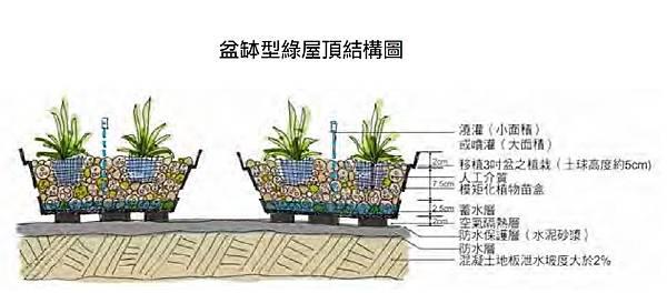 盆缽式,綠屋頂,盆栽,示意圖,綠建築,結構圖,植栽,植物,綠化