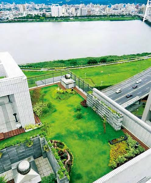 綠屋頂,屋頂綠化,綠建築,薄層式,草地,綠意