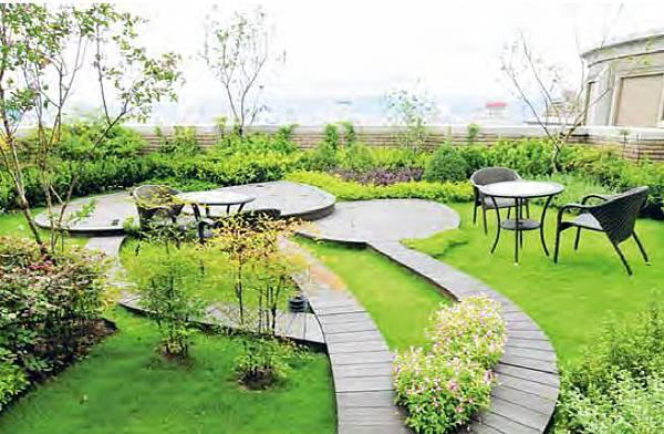 綠,樹,草地,綠意,綠化,屋頂綠化,庭院式,花園,休憩,放鬆,優美,休閒,景觀