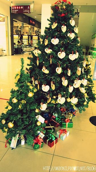 Wishing tree .jpg