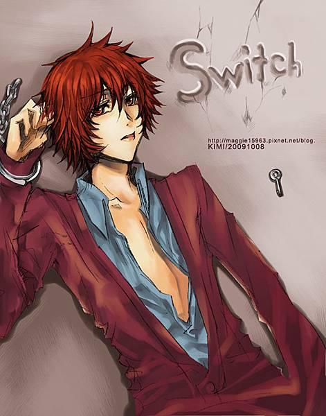 Switch-kai..jpg