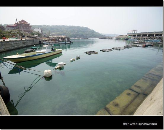 杉福漁港_04