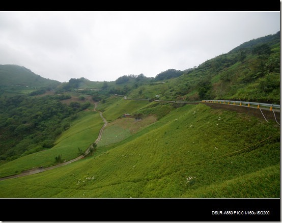 太麻里山09