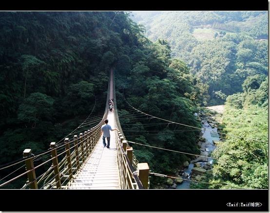 竹山天梯梯子吊橋_28