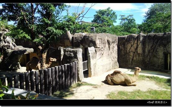 高雄壽山動物園_08