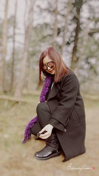 春遊荷比盧【梵谷森林國家公園/庫勒慕勒美術館】倘佯在大自然的懷抱。免費單車暢遊公園