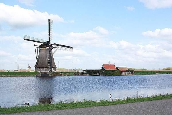 春遊荷比盧【鹿特丹小孩堤坊】19座風車群。鉛筆屋。方塊屋。台夫特皇家藍陶。海牙和平宮。騎士樓