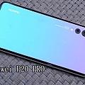 P1650758.JPG