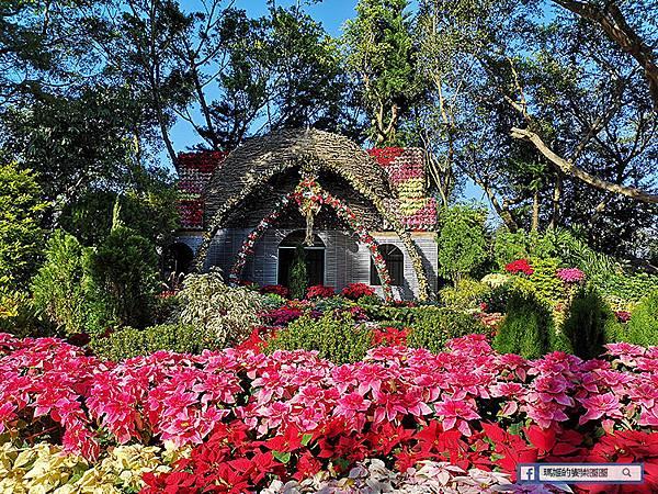 苗栗景點【花露休閒農場】浪漫聖誕花園。精油主題館。薰衣草花園。苗栗景觀農場