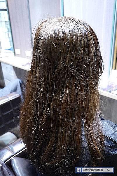新店染髮推薦【Wor hair七張店】新店七張站平價質感美髮沙龍/新店護髮