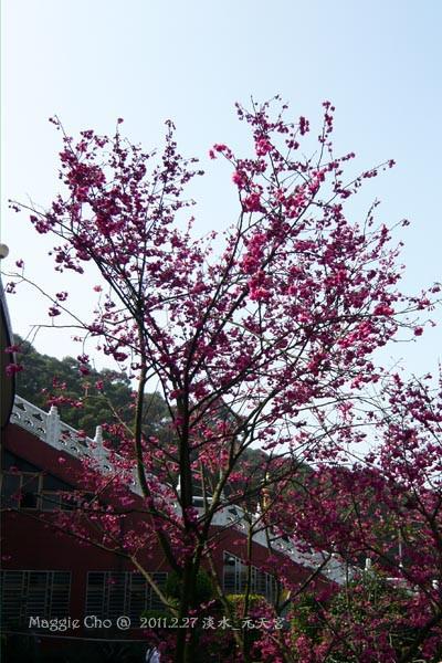 2011-0227-103026(北)淡水-天元宮.jpg