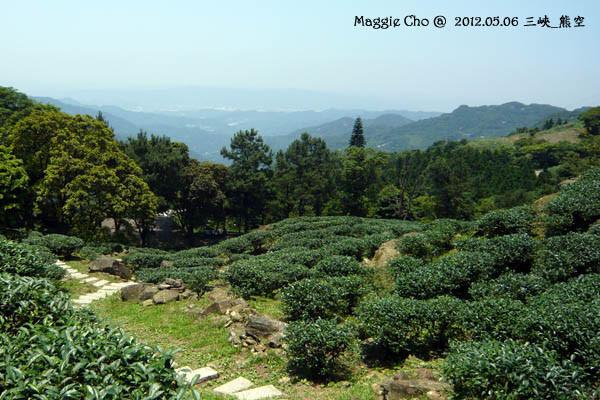 2012-0506-120221(北)三峽-熊空.jpg