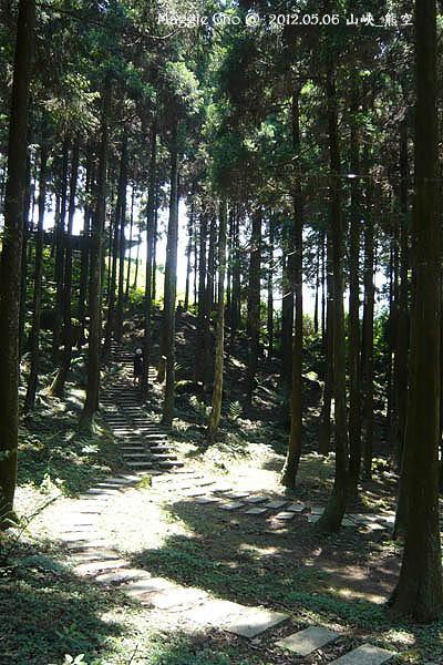 2012-0506-125208(北)三峽-熊空.jpg