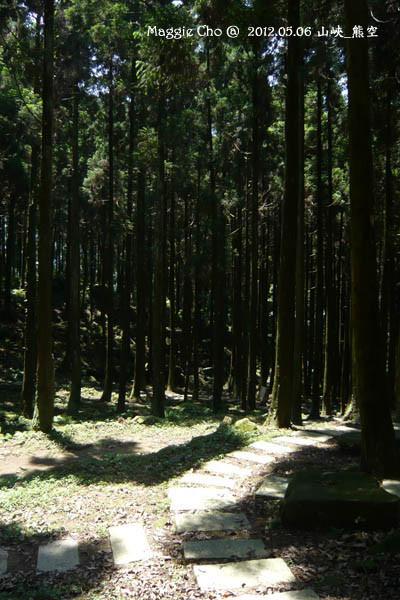 2012-0506-125213(北)三峽-熊空.jpg