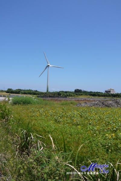 2010-0718-111733(中)大甲-葵海農場.jpg