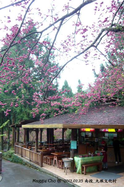 2012-0225-102247(投)魚池-九族文化村.jpg