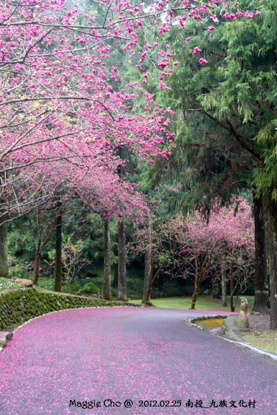 2012-0225-102442(投)魚池-九族文化村.jpg