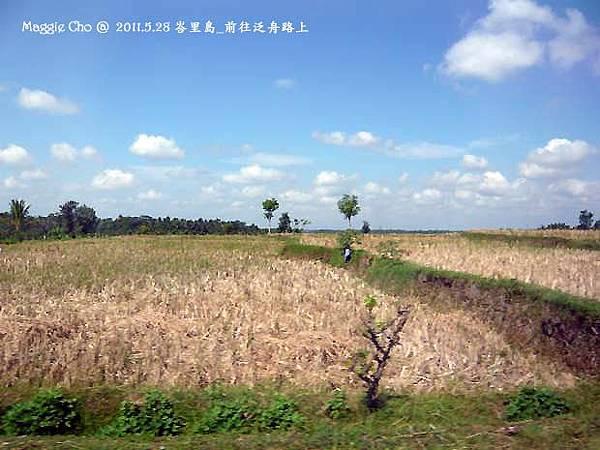 2012-0527-峇里島(097).jpg