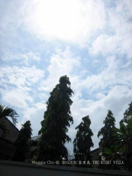2012-0527-峇里島(186).jpg