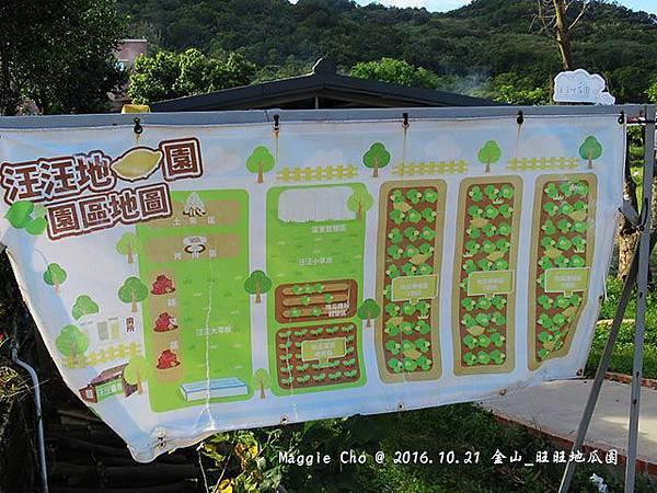 2016_1001_151035金山_旺旺地瓜園.JPG