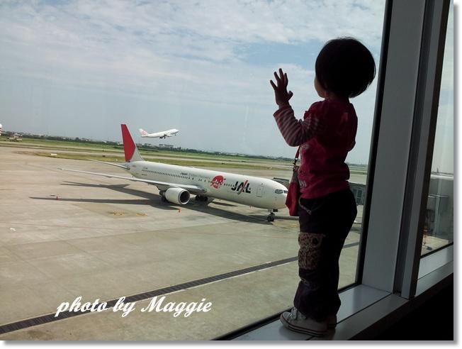 霏霏看飛機