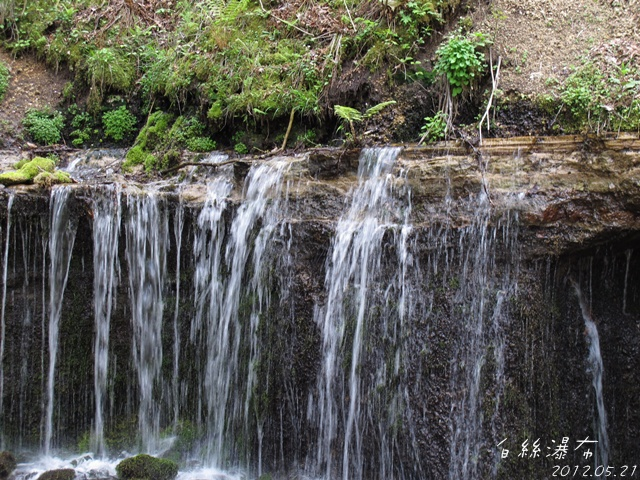 水從岩壁裡滲出