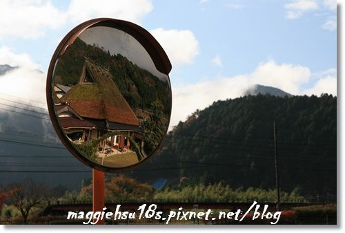 IMG_9925.JPG