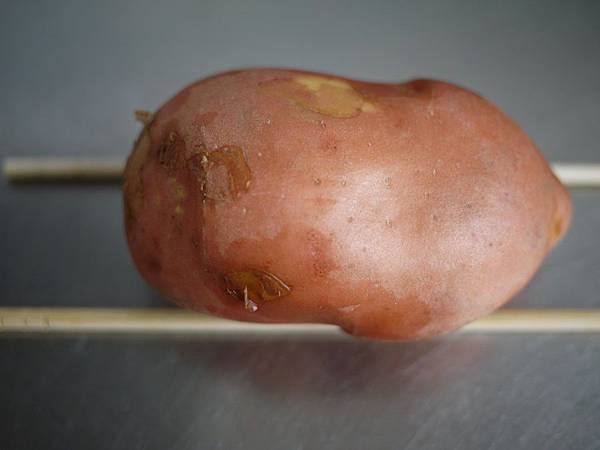 2015/04/20 風琴烤馬鈴薯