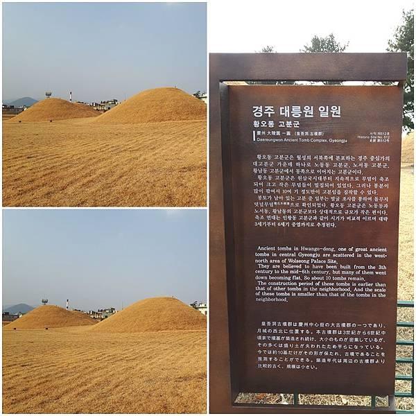 20180102 D-5 慶州第一站 大陵園