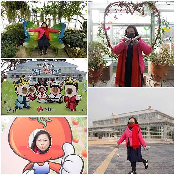 20180102 D-5 慶州第二站 植物園