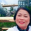 20190405 峴港黃金橋
