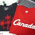 20190615 加拿大NBA冠軍 打七折