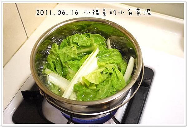 2011.06.16小白菜泥 (4)