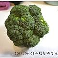 2011.06.02 花椰菜泥 (1)