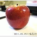 2011.05.25蘋果泥 (1)