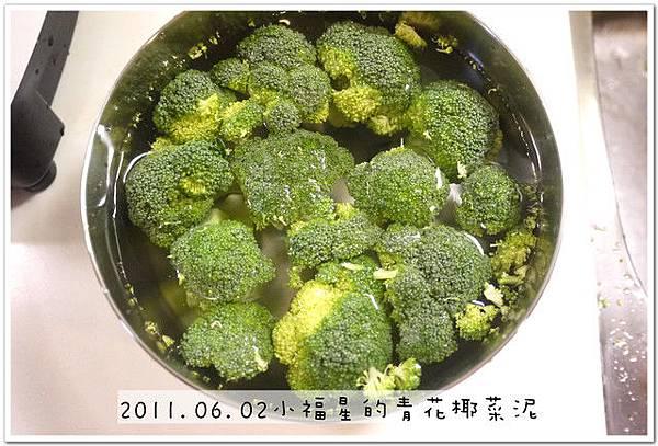 2011.06.02 花椰菜泥 (3)