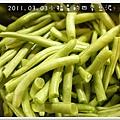 2011.07.03四季豆泥 (3)