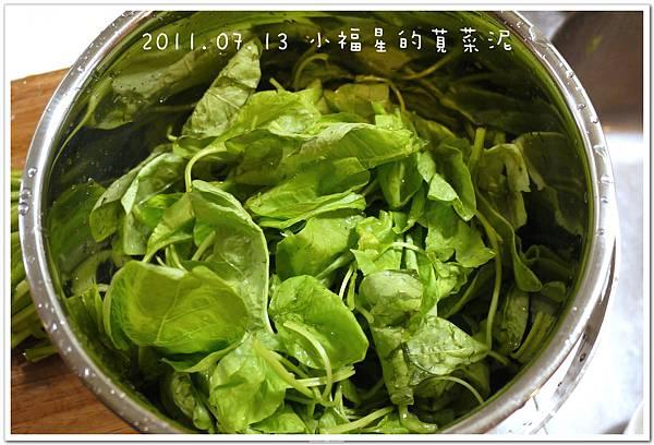 2011.07.13 小福星的莧菜泥 (3).JPG