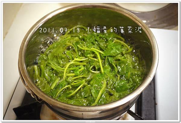 2011.07.13 小福星的莧菜泥 (4).JPG