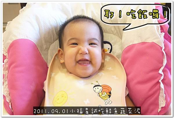 2011.09.01 小福星試吃happy baby鮭魚蔬菜泥 (7).JPG