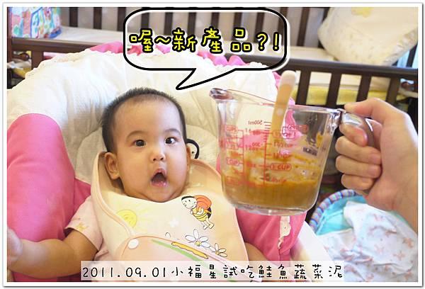 2011.09.01 小福星試吃happy baby鮭魚蔬菜泥 (8).JPG