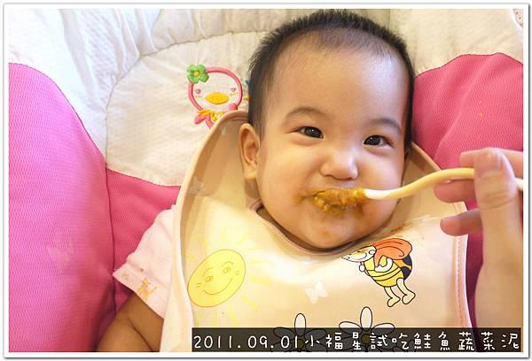 2011.09.01 小福星試吃happy baby鮭魚蔬菜泥 (10).JPG