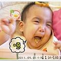 2011.09.01 小福星試吃happy baby鮭魚蔬菜泥 (12).JPG