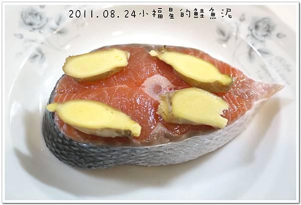 2011.08.24鮭魚泥 (2).JPG