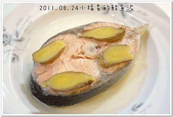 2011.08.24鮭魚泥 (4).JPG
