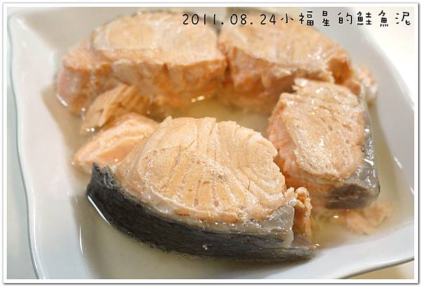 2011.08.24鮭魚泥 (5).JPG