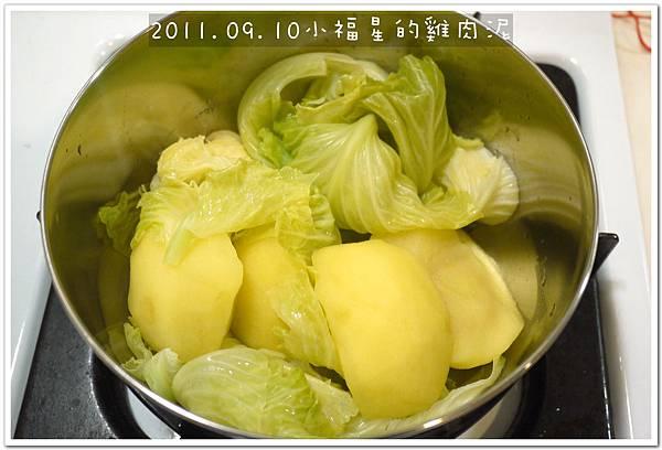 2011.09.10 雞肉泥 (3).JPG