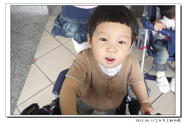 2012.04.11台北市立動物園 (5)